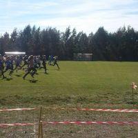 ZS Stanin - Mistrzostwa woj. Lubelskiego w Biegach Przełajowych