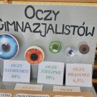 ZS Stanin - Misja Gimnazjum 2017/2018
