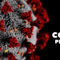 Zespół Szkół w Staninie - Procedury zapewniania bezpieczeństwa przeciwdziałania epidemii COVID-19