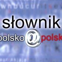Zespół Szkół w Staninie - Słownik polsko - polski z udziałem naszych uczniów